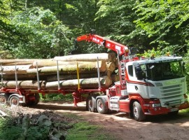 Forestry equipment for Steered 3 axles extendable semi-trailer Scania 6x4 + crane DIEBOLT D28-87