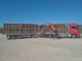 Forestry equipment with 3 axles platform trailer Volvo 6x4 + crane Tajfun-Liv L190Z96 + R31700