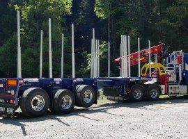 Forestry equipment with Steered 3 axles extendable semi-trailer Volvo 6x4 + crane Tajfun-Liv 300K99 + 3 axles extendable semi-trailer