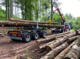 Forestry equipment for 3 axles forestry dolly Volvo 6x4 + crane Tajfun-Liv 320K99 + AR5670