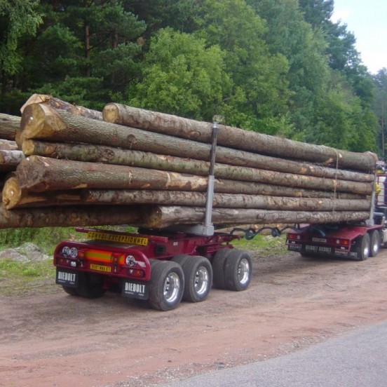Forestry dolly