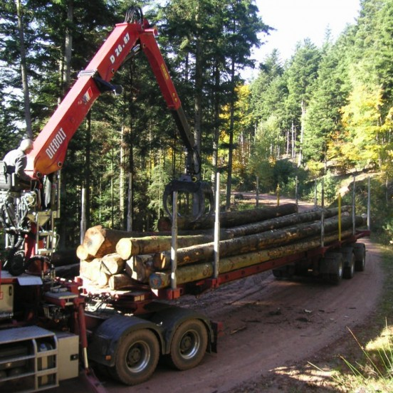 Diebolt cranes for short woods and timbers