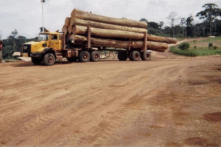 Langholzexportaufbauten – ausser EU