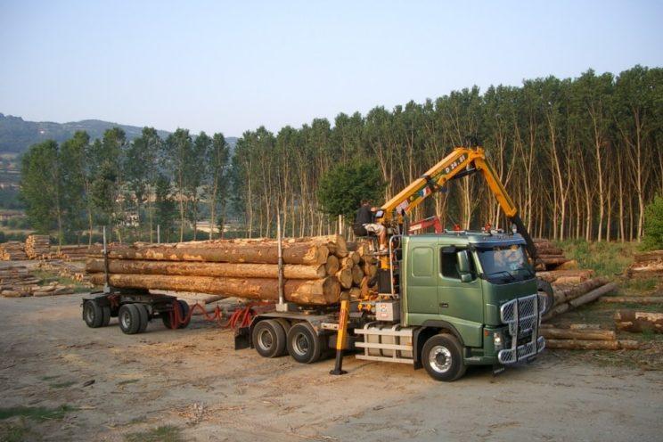 Arrière-train forestier 2 essieux directionnel
