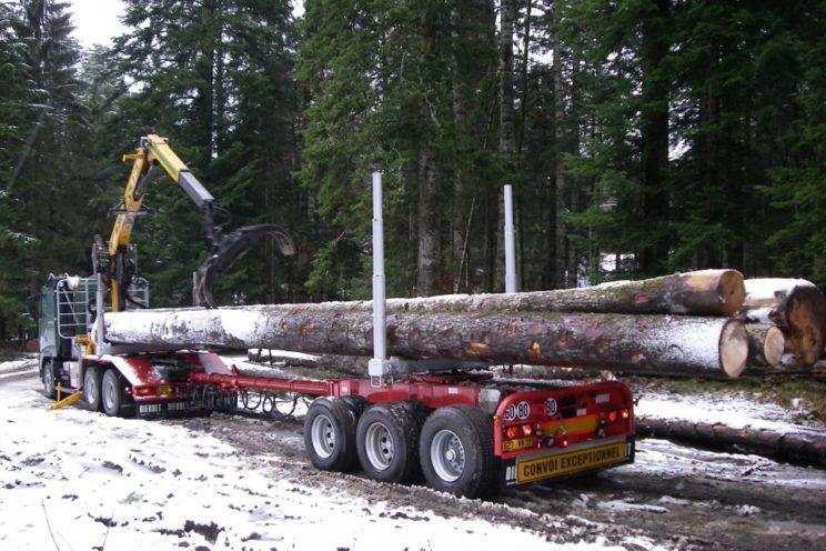 Arrière-train forestier 3 essieux à timon