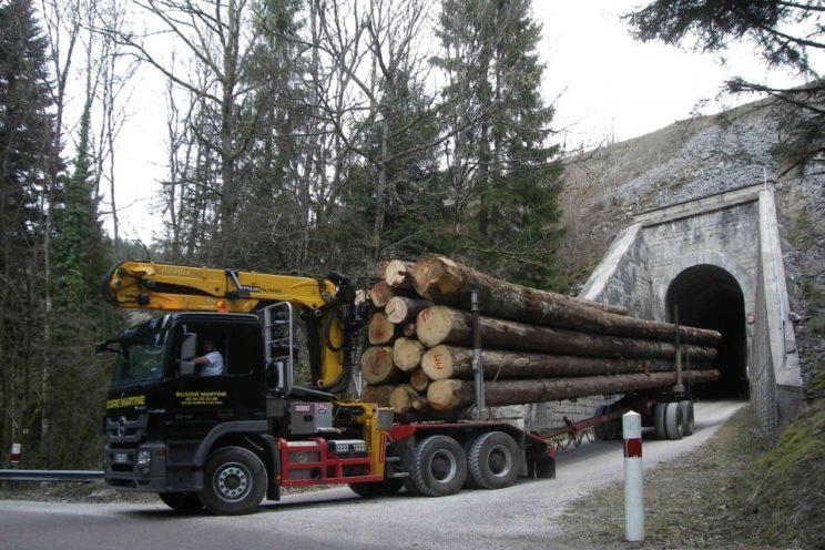 Arrière-train forestier boggie 2 essieux à timon