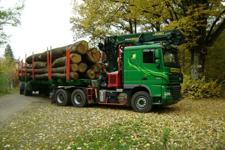 Forestry equipment for timbers