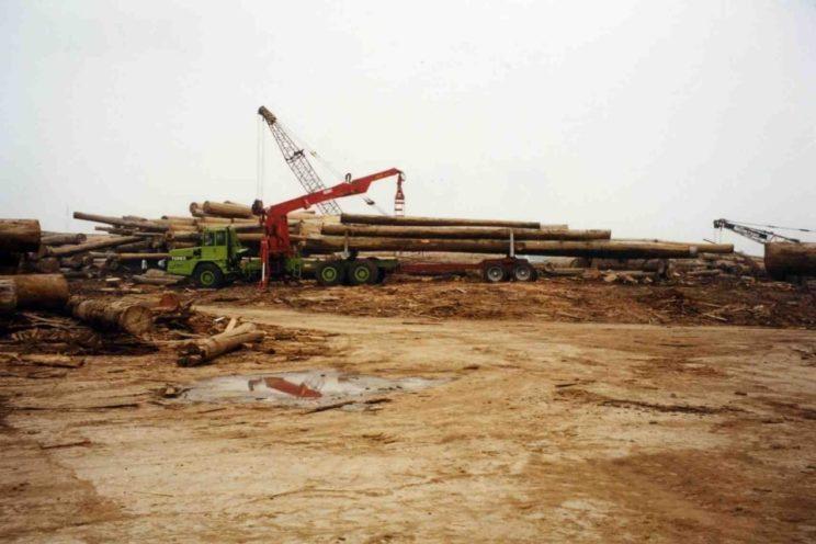 Diebolt crane on dumper TEREX, ASTRA, VOLVO…